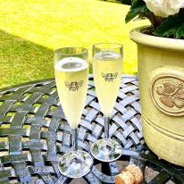 A Pair of Bee 6.6 oz Fizz Flutes