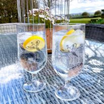 A Pair of Pheasant 15 oz Gin/ Pimms/ Beer Goblets