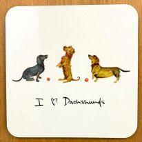 I love Dachshunds Coaster