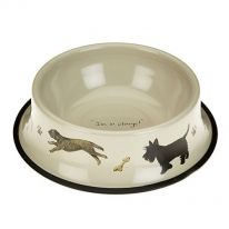 """I'm in Charge!"" Dog Bowl"