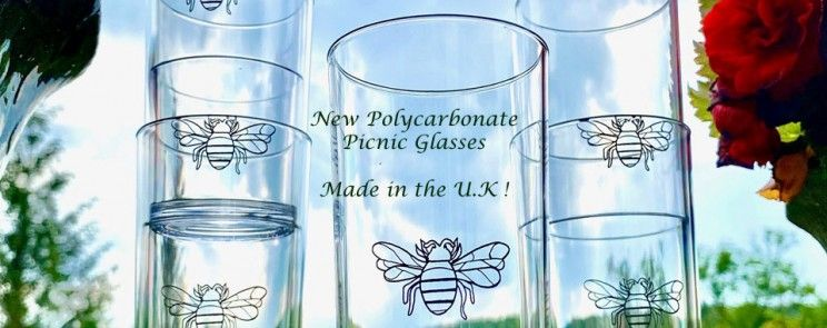 New Polycarbonate Glasses